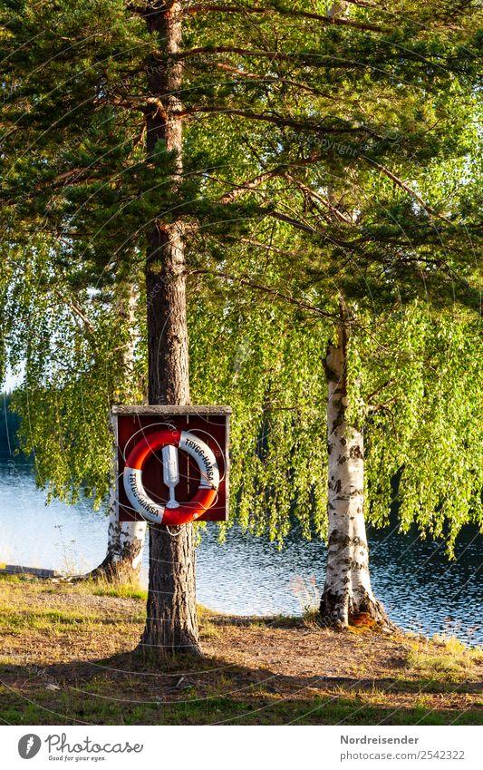 Badesee in Schweden Ferien & Urlaub & Reisen Tourismus Camping Sommer Sommerurlaub Sonne Wasser Schönes Wetter Baum Wald Seeufer Schwimmen & Baden ruhig