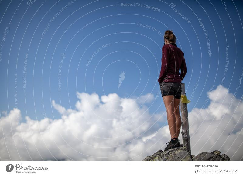 Leuchtturm über den Wolken. Frau Erwachsene wandern Bergsteigen Berge u. Gebirge Wildnis Natur Aussicht Naturliebe Farbfoto
