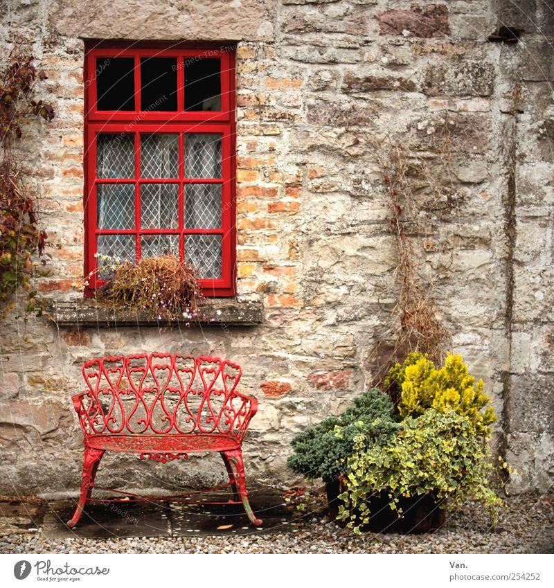 Nimm Platz! Wohnung Bank Gartenbank Gardine Pflanze Topfpflanze Dorf Haus Mauer Wand Fassade Fenster Stein Glas sitzen rot Kies ländlich einladend gemütlich