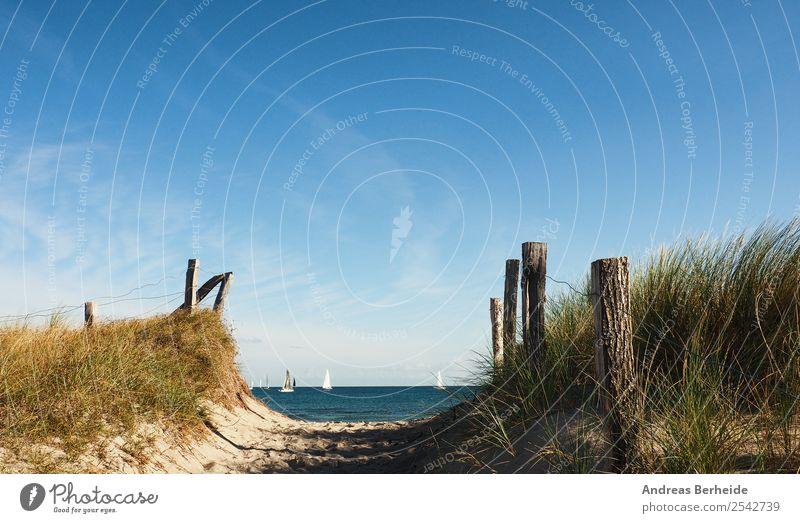 Auf zum Strand Natur Ferien & Urlaub & Reisen Sommer Erholung Ferne Hintergrundbild Wege & Pfade Deutschland Sand Europa planen Unendlichkeit Ostsee