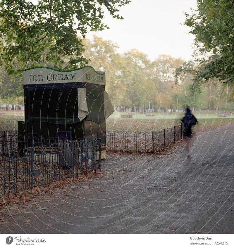 Green Park 6am Mensch Frau Natur Erwachsene kalt Umwelt hell Stimmung laufen authentisch viele Zaun Hauptstadt Sonnenuntergang Buden u. Stände