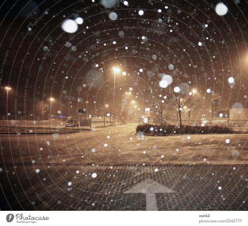 Parkplatzsuche Winter Schneefall Baum Straße Wegkreuzung Parkplatzbeleuchtung Zeichen Pfeil kalt nass Stadt Schneeflocke Einkaufszentrum Laternenpfahl Farbfoto
