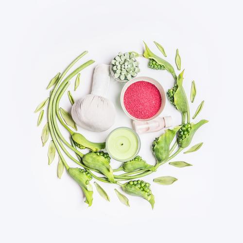 Beauty und gesundes Lebensstil mit SPA Natur Pflanze schön grün Blume Blatt Freude Design rund Wellness Wohlgefühl Beautyfotografie Körperpflege Duft Kosmetik