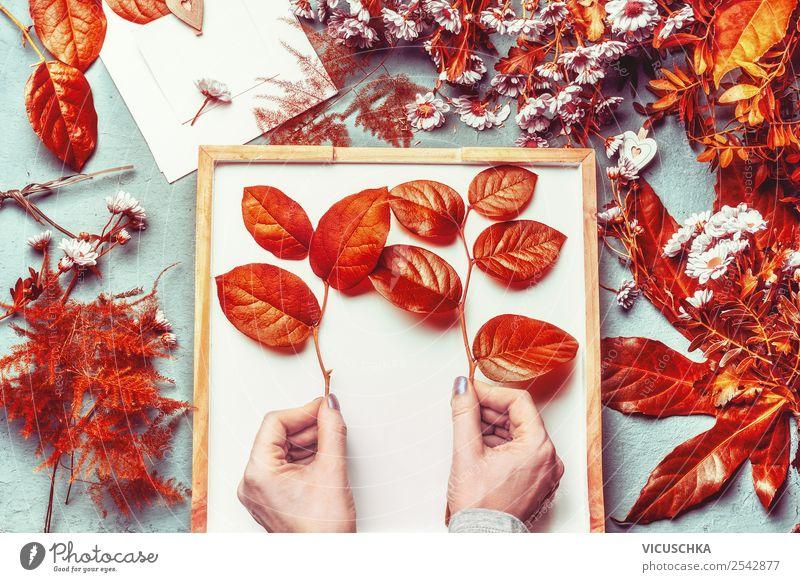 Weibliche hände halten Zweige mit Herbstblättern Stil Design Dekoration & Verzierung Feste & Feiern feminin Frau Erwachsene Hand Blume Blatt Blüte Blumenstrauß