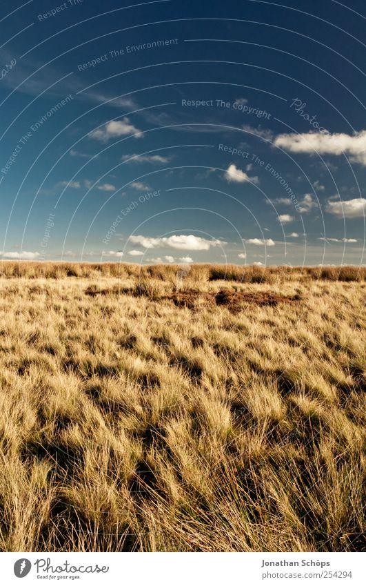 Peak District III Umwelt Natur Landschaft Pflanze Himmel Wolken Klima Wetter Schönes Wetter Wind Feld blau braun gelb gold Zufriedenheit Freiheit Ferne wandern