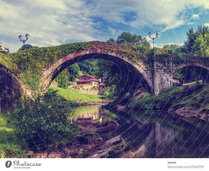 Historische Steinbrücke mit Rundbogen und Spiegelung im Bach, Haus im Hintergrund Brücke Halbkreis alt efeu bewachsen Natur Himmel blau Sommer Landschaft