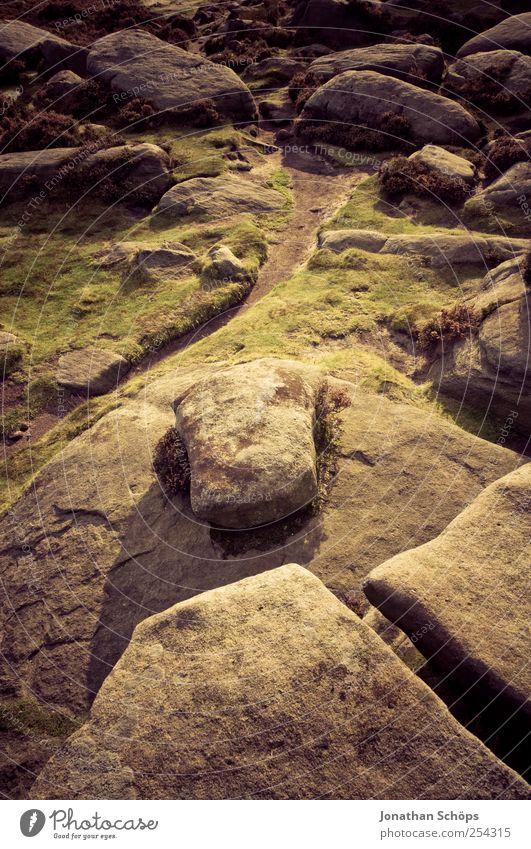 Peak District VII Umwelt Natur Landschaft Pflanze Erde Klima Wetter Hügel Felsen Berge u. Gebirge braun gold grün violett Mut Tatkraft wandern Abenteuer