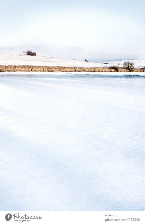 stille Seeidylle Natur Landschaft Wasser Himmel Winter Eis Frost Schnee Baum Sträucher Hügel Seeufer authentisch kalt natürlich ruhig Einsamkeit stagnierend