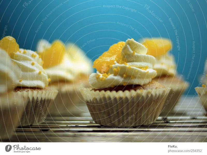 frisch vom Blech Lebensmittel Teigwaren Backwaren Kuchen Dessert Süßwaren Ernährung Küche klein lecker süß blau gelb weiß Törtchen Muffin Mandarine kühlen