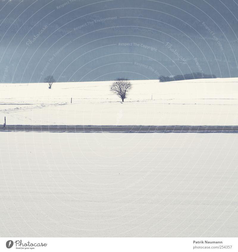 Wintertag Landschaft Klimawandel Eis Frost Schnee Schneefall Baum Feld Verkehrswege Straße Erholung frieren genießen träumen wandern Ferne frei frisch glänzend