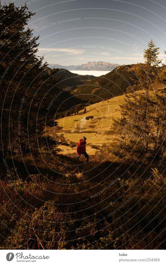 Herbstwanderung Tourismus Berge u. Gebirge wandern 1 Mensch 45-60 Jahre Erwachsene Umwelt Natur Landschaft Schönes Wetter Hügel Felsen Alpen Gipfel