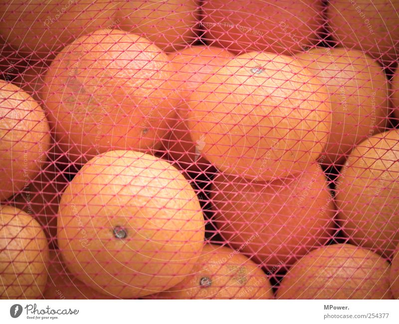 vernetzte Vitamine Ernährung Lebensmittel Gesundheit Orange frisch süß gut rund Netz lecker Appetit & Hunger Bioprodukte saftig sauer vitaminreich