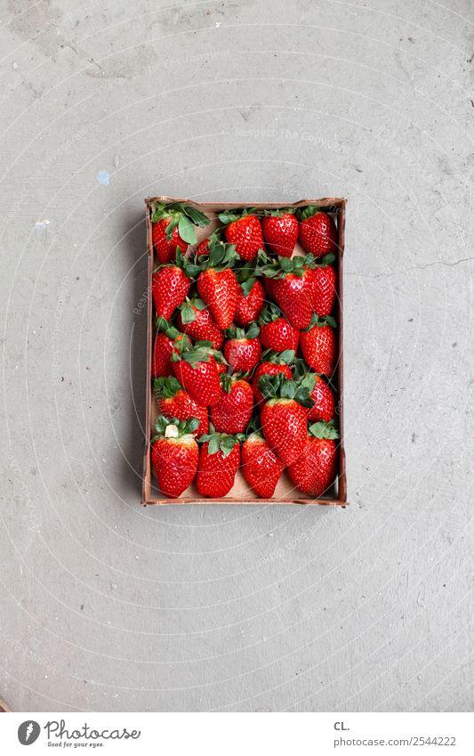 erdbeeren Gesunde Ernährung rot Gesundheit Essen Lebensmittel natürlich Frucht süß genießen Boden lecker Erdbeeren Karton