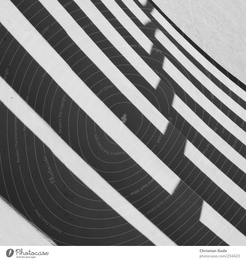 Hommage to Buren Menschenleer Bauwerk Mauer Wand Treppe Stein Beton schwarz Streifen diagonal Schattenspiel grau Schwarzweißfoto Außenaufnahme Experiment