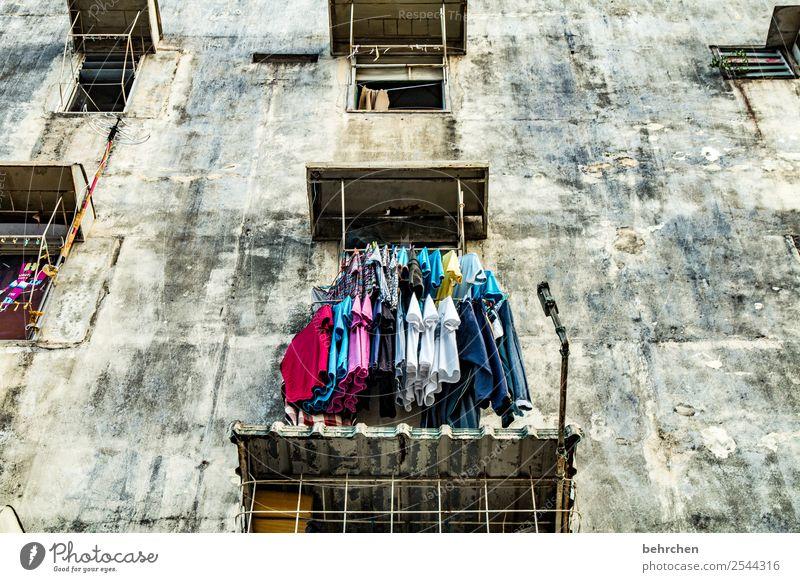 verwandlung | aus trist wird fröhlicher! Ferien & Urlaub & Reisen Stadt Haus Ferne Fenster Wand Tourismus Mauer außergewöhnlich Freiheit Stadtleben Ausflug