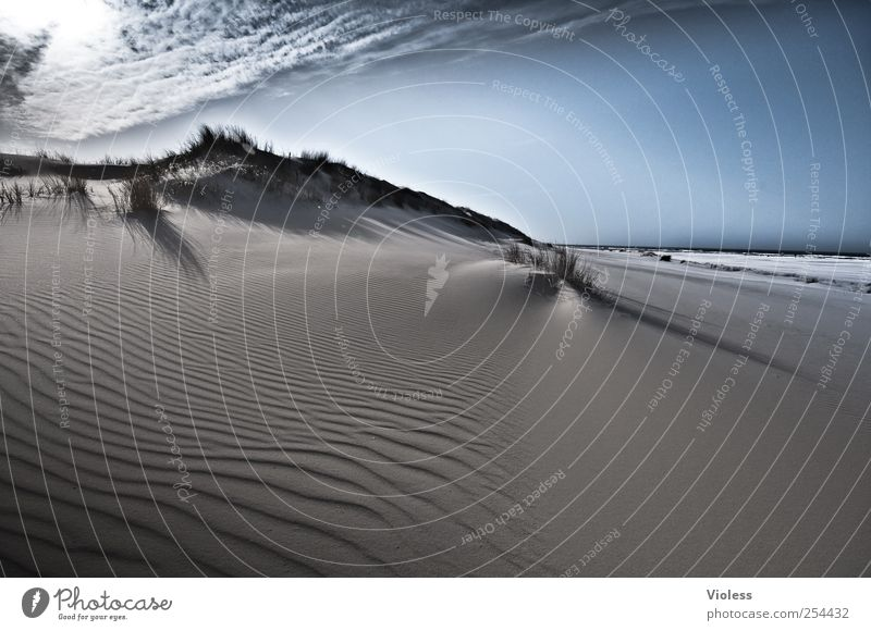 Spiekeroog | ...never ending Natur Sand Himmel Wolken Sonnenlicht Schönes Wetter Küste Strand Nordsee Meer Insel Erholung frei Freude Nordseeinsel Stranddüne