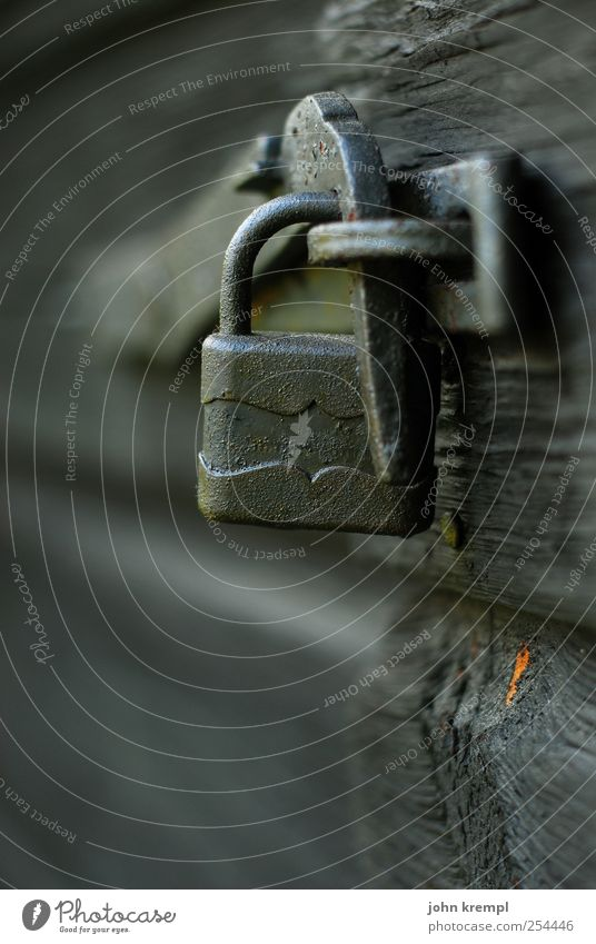 Der Nagel IV alt Holz grau Metall geschlossen Wandel & Veränderung Spitze Vergänglichkeit Schutz Vertrauen Tor Vergangenheit Mut Schloss Versicherung Misserfolg