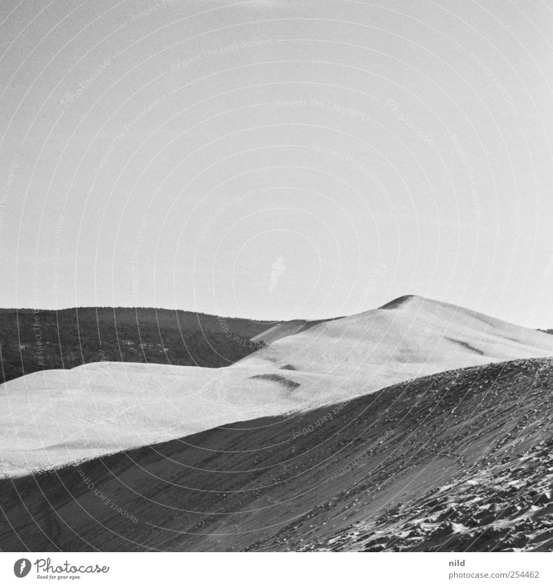 Dünenwandern Himmel Natur Sommer Ferien & Urlaub & Reisen Wald Umwelt Landschaft grau Sand Tourismus Wüste Sommerurlaub Wolkenloser Himmel Dune du Pyla