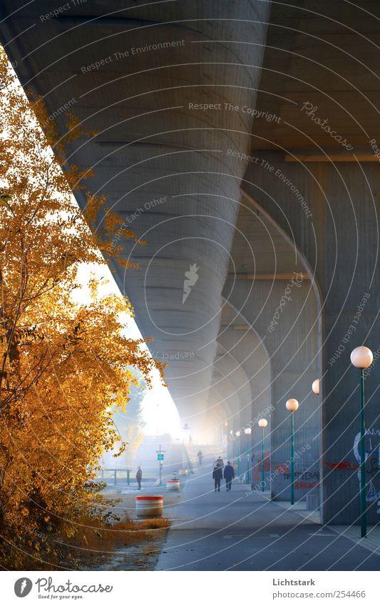 zum licht Freizeit & Hobby Ausflug Städtereise Mensch 4 Wien Österreich Hauptstadt Stadtrand bevölkert Park Brücke Architektur Mauer Wand Straßenbeleuchtung