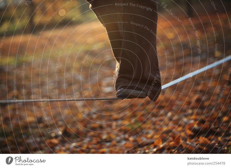 patience Freizeit & Hobby Sport Gleichgewicht Beine Fuß Zirkus Umwelt Schönes Wetter Park Hose festhalten hoch positiv braun gelb gold Optimismus geduldig ruhig