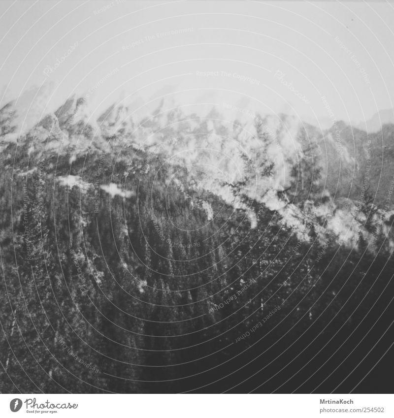 the sun. Umwelt Natur Landschaft Pflanze Hügel Felsen Alpen Berge u. Gebirge Gipfel Schneebedeckte Gipfel Frühlingsgefühle Vorfreude Doppelbelichtung