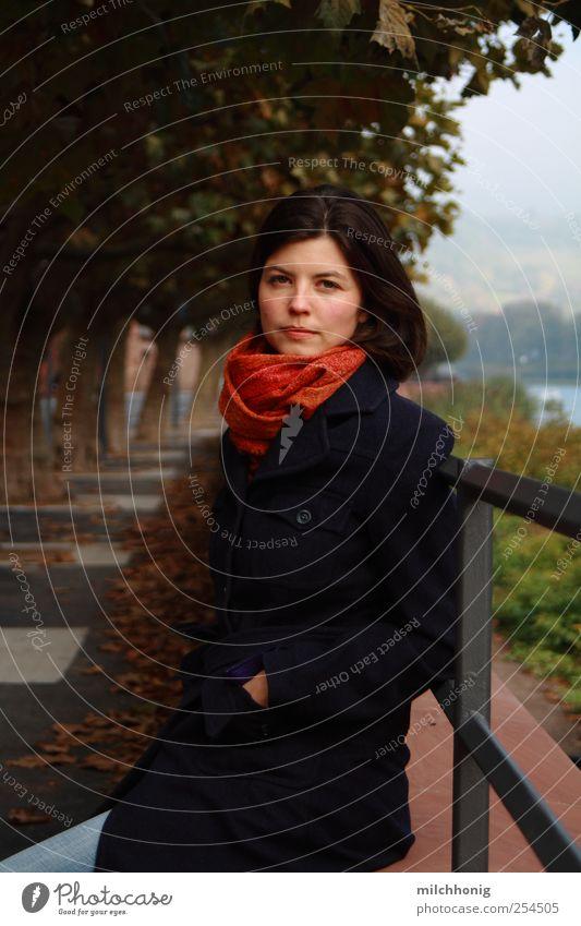 Moment an Allee Mensch Jugendliche ruhig Erholung feminin Straße Herbst Erwachsene Stil Wege & Pfade Stimmung Zufriedenheit sitzen Nebel ästhetisch Sicherheit