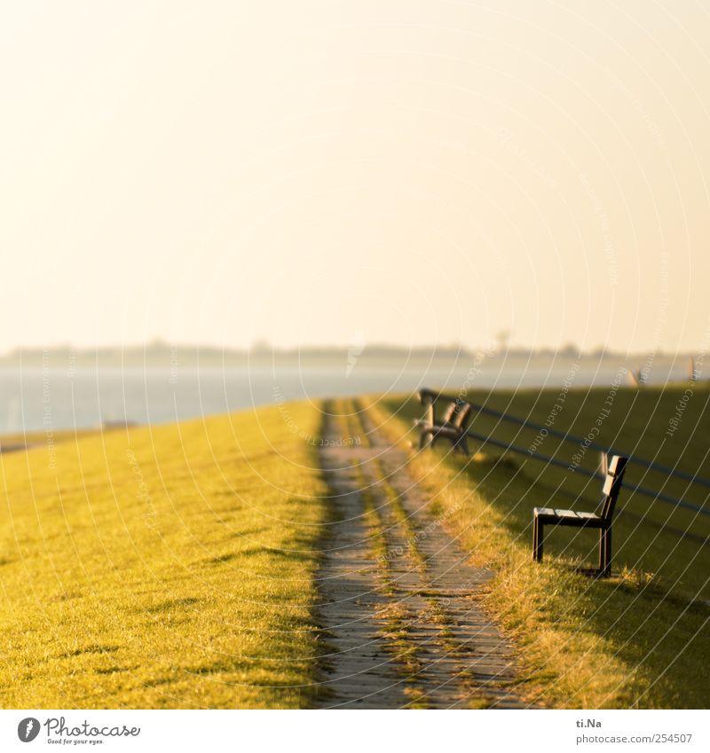 Nordseelauschen Erholung Gras Küste hell Tourismus Wattenmeer Schleswig-Holstein Dithmarschen