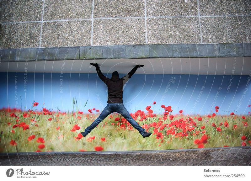Deckenhalter Freizeit & Hobby Mensch Mann Erwachsene 1 Kunst Umwelt Natur Wolkenloser Himmel Pflanze Blume Mauer Wand Fassade Jeanshose Jacke Stein Beton