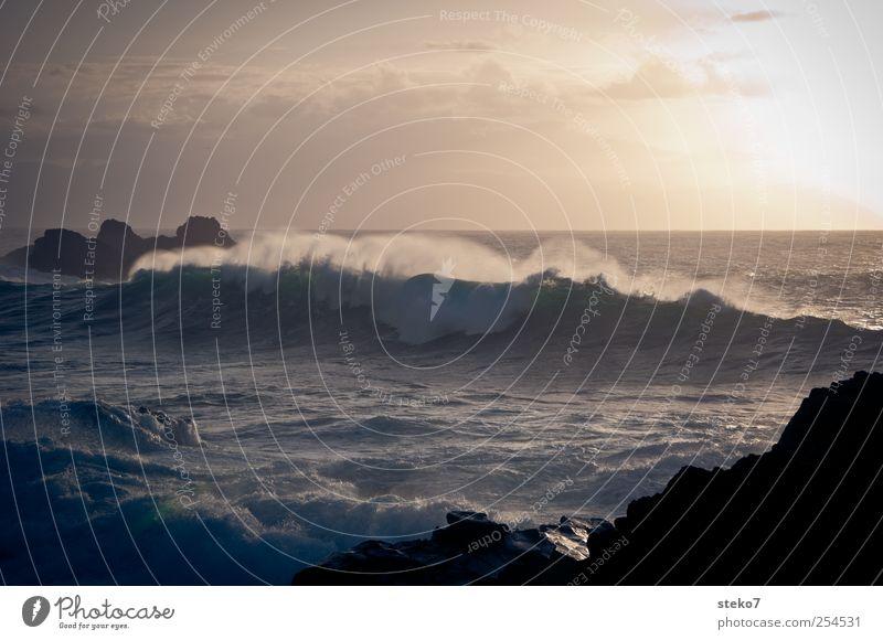 Gegenlichtgischt Himmel Meer Landschaft Küste Wellen wild Brandung Gischt