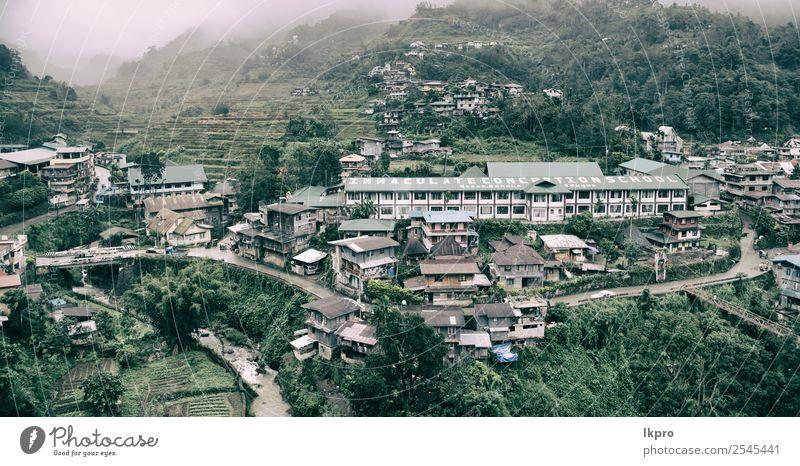 Anbau von Reis aus der Unesco-Banaue schön Ferien & Urlaub & Reisen Berge u. Gebirge wandern Haus Umwelt Natur Landschaft Pflanze Erde Wind Nebel Regen Blatt
