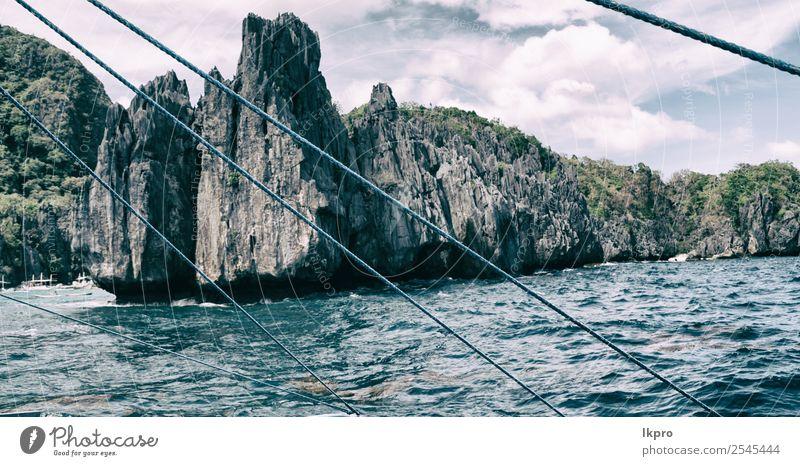 Himmel Natur Ferien & Urlaub & Reisen Sommer Pflanze blau schön Landschaft weiß Baum Meer Erholung Strand schwarz natürlich Tourismus