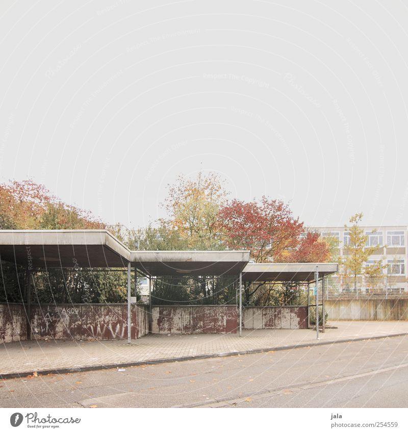 haltestelle Himmel Herbst Pflanze Baum Haus Bauwerk Gebäude Architektur Straße Wege & Pfade trist Bushaltestelle Farbfoto Außenaufnahme Menschenleer