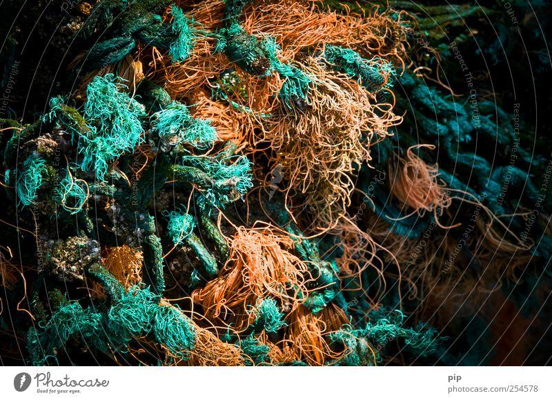zeelandsgarn Fischernetz nass trashig grün Seil Knoten durcheinander chaotisch Orange Strandgut türkis zerzaust verrotten Schnur Nylonschnur verloren Farbfoto