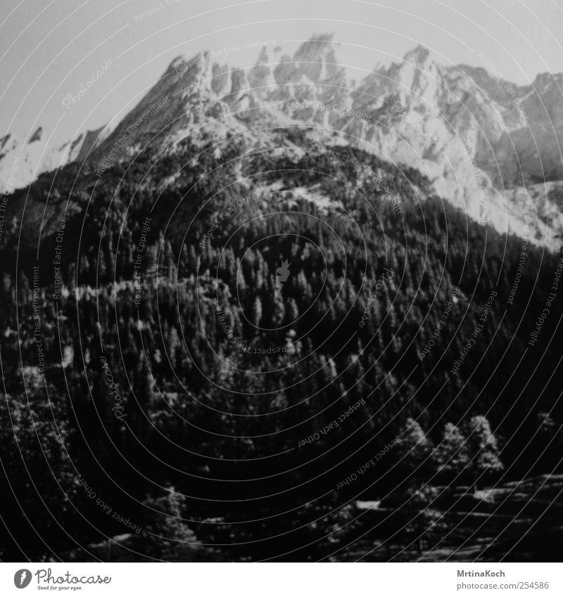 pressure drop. Umwelt Natur Landschaft Pflanze Himmel Wolkenloser Himmel Eis Frost Schnee Baum Wald Hügel Felsen Alpen Berge u. Gebirge Gipfel