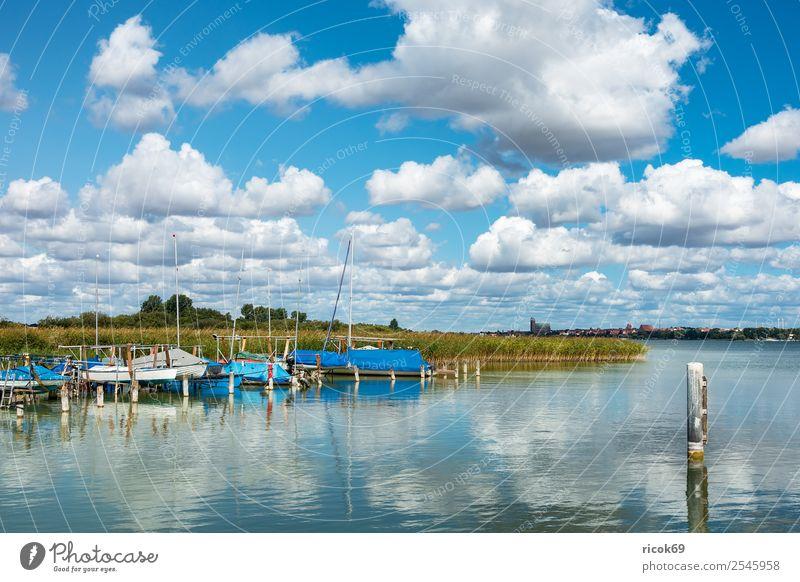Boote am Unterucksee in Röpersdorf Erholung Ferien & Urlaub & Reisen Natur Landschaft Wolken Baum See Hafen Segelboot Wasserfahrzeug Jachthafen blau grün Idylle