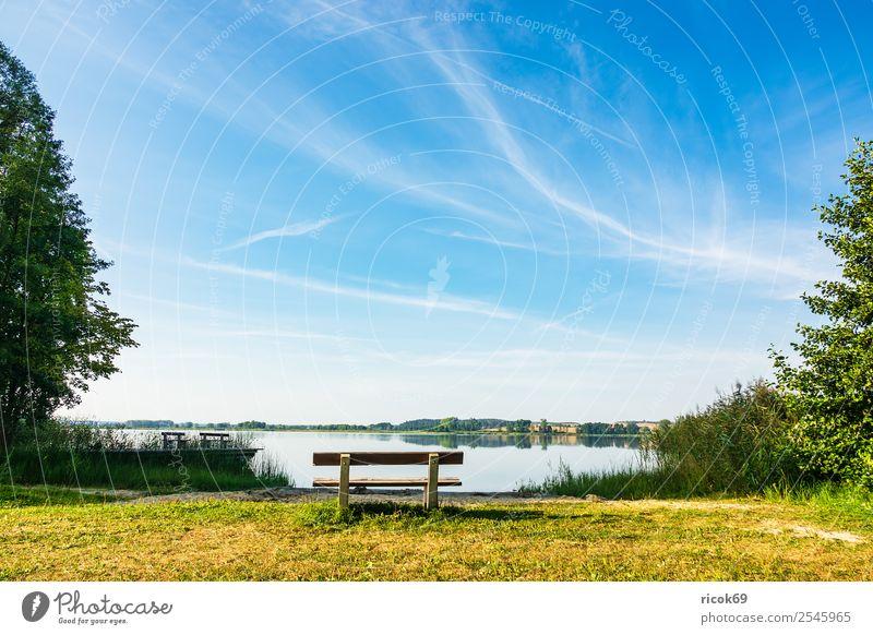 Landschaft mit See in Potzlow Erholung Angeln Ferien & Urlaub & Reisen wandern Natur Wolken Baum blau grün Idylle Pause Tourismus Uckermark Schilfrohr Ufer