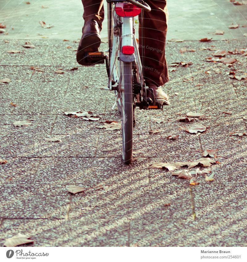 Durch den Herbst Fahrradfahren Blatt Bürgersteig braun grau rot Rad Herbstlaub Ahornblatt treten aufwärts Rückansicht Reifen Park Bewegung Schuhe Hose Mensch