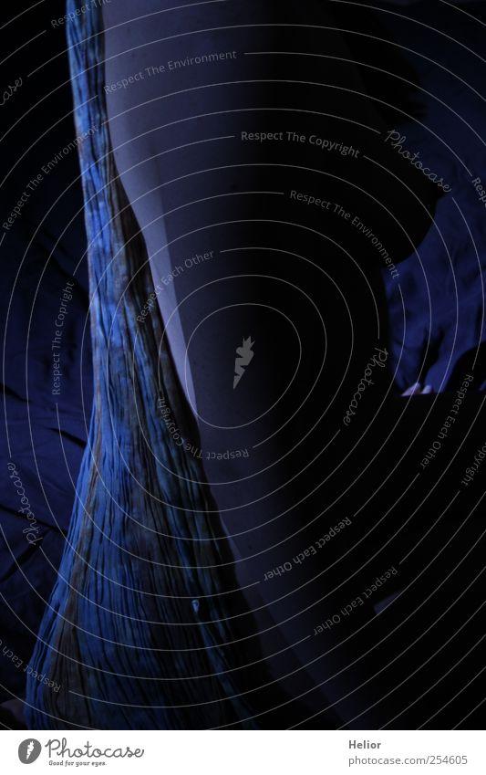 Geheimnis in blau 1 feminin Rücken Mensch sitzen ästhetisch elegant dünn weich schwarz Stimmung schön Begierde Lust Gefühle Farbfoto Innenaufnahme Kunstlicht