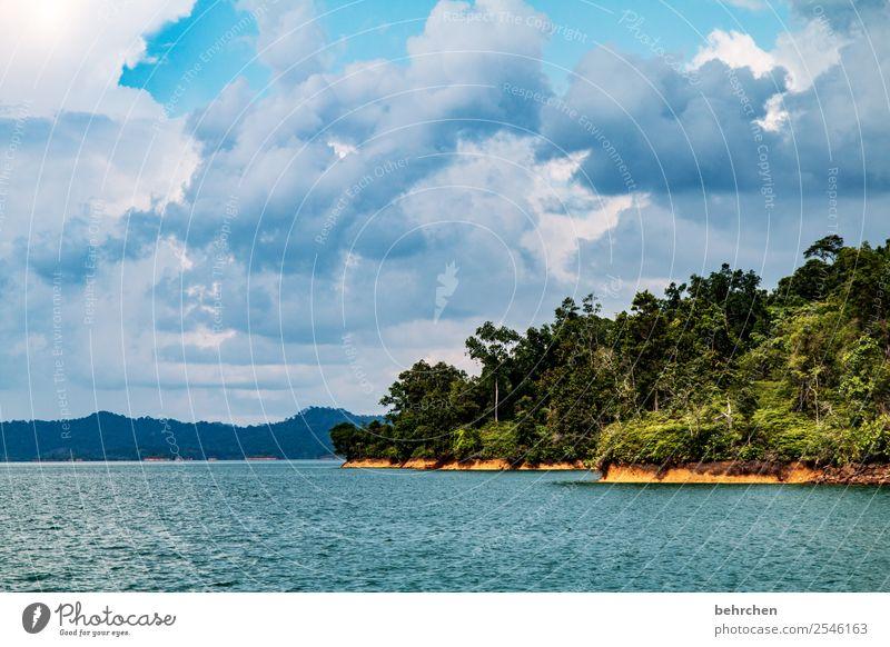 abenteu(r)er Ferien & Urlaub & Reisen Tourismus Ausflug Abenteuer Ferne Freiheit Natur Landschaft Wasser Himmel Wolken Pflanze Baum Sträucher Urwald Wellen See