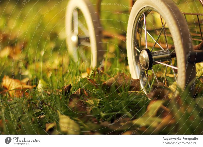 And the wheels go round 'n round alt grün weiß schön Blatt Wiese Herbst Bewegung Kindheit Schönes Wetter retro drehen Originalität Kinderwagen Jahreszeiten Mensch