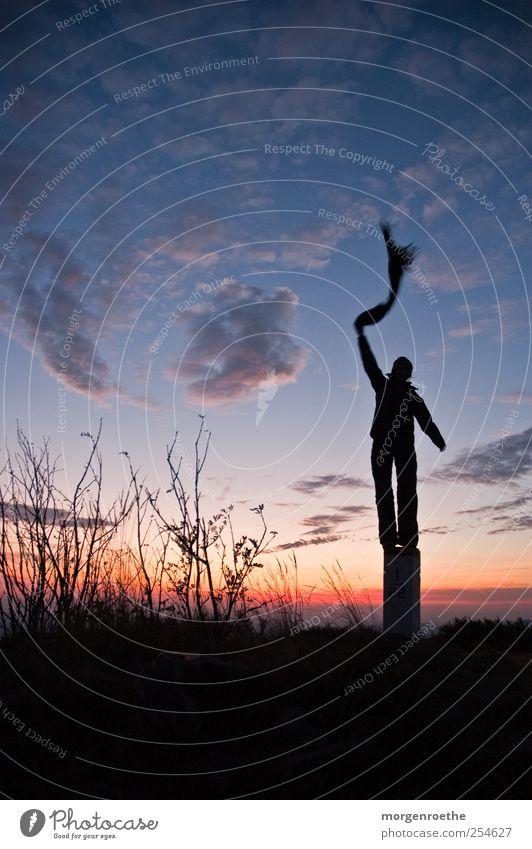 frei sein Abenteuer Freiheit Berge u. Gebirge wandern Student Mensch Frau Erwachsene Beine 1 Natur Landschaft Himmel Wolken Herbst Sträucher Schal stehen schön