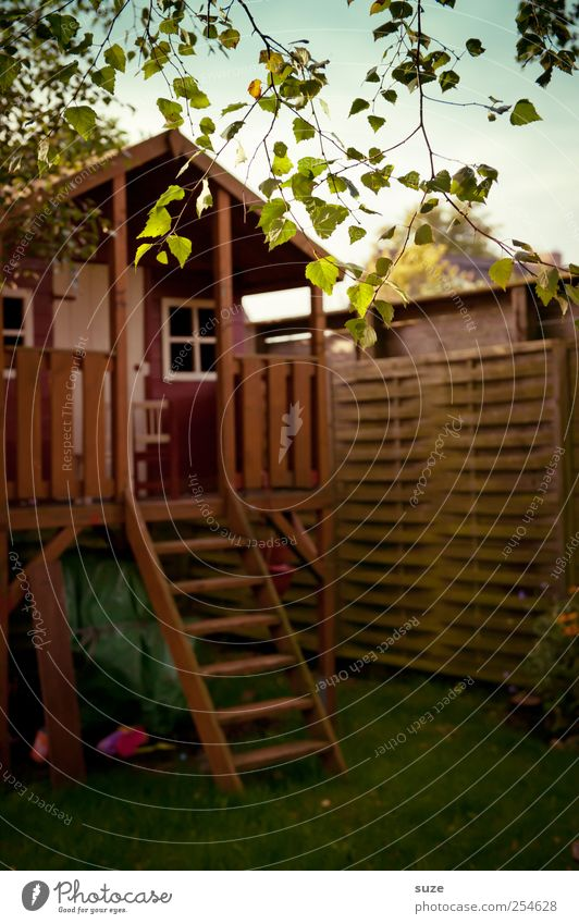 Spielhaus Haus Umwelt Wiese Holz klein Garten braun Kindheit Freizeit & Hobby Treppe Kindheitserinnerung niedlich Zaun Zweig Kindergarten Holzhaus