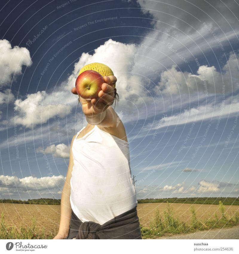 einen hab ich noch ... Kind Mädchen Haut Kopf Finger Bauch 3-8 Jahre Kindheit Umwelt Natur Landschaft Himmel Sommer Klima Wetter Schönes Wetter Feld Gesundheit