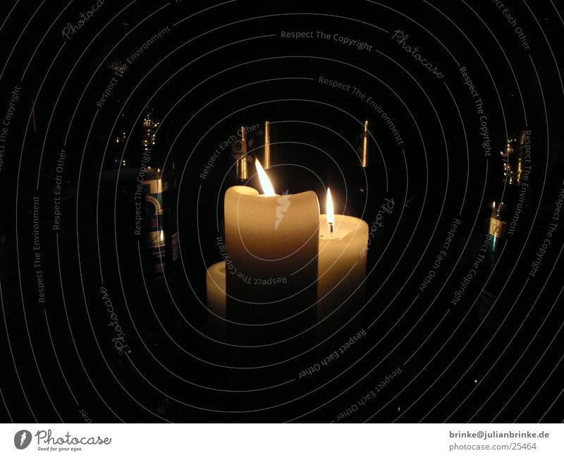 Kerzen im Flaschenwald dunkel hell Häusliches Leben Meerschweinchen Krefeld