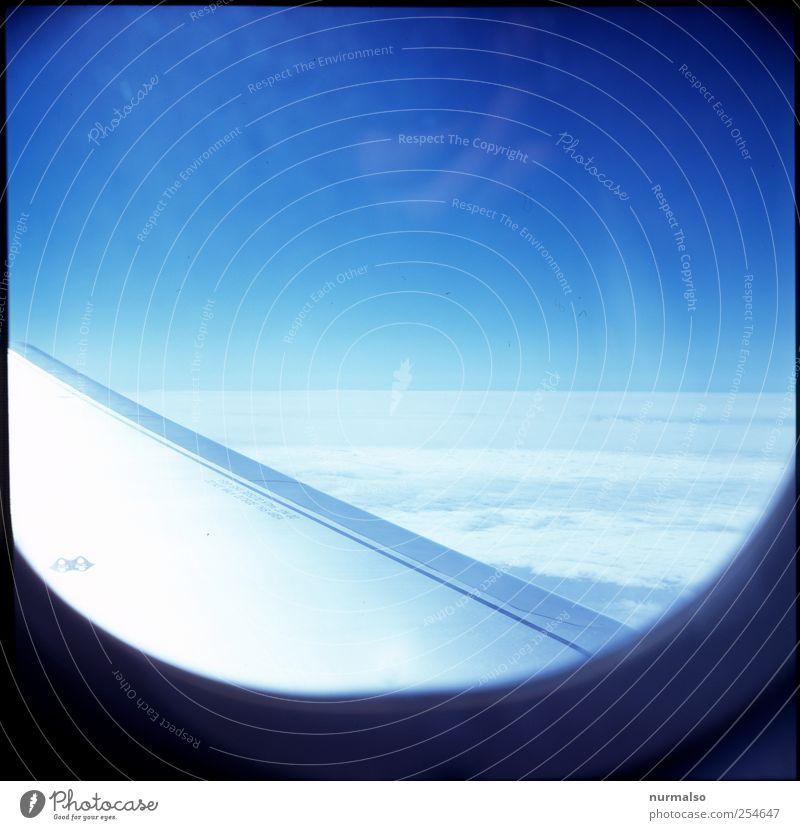 wings Himmel Ferien & Urlaub & Reisen Sommer Freude Wolken Landschaft oben Stimmung Kunst Freizeit & Hobby Horizont fliegen Tourismus Luftverkehr Klima Lifestyle