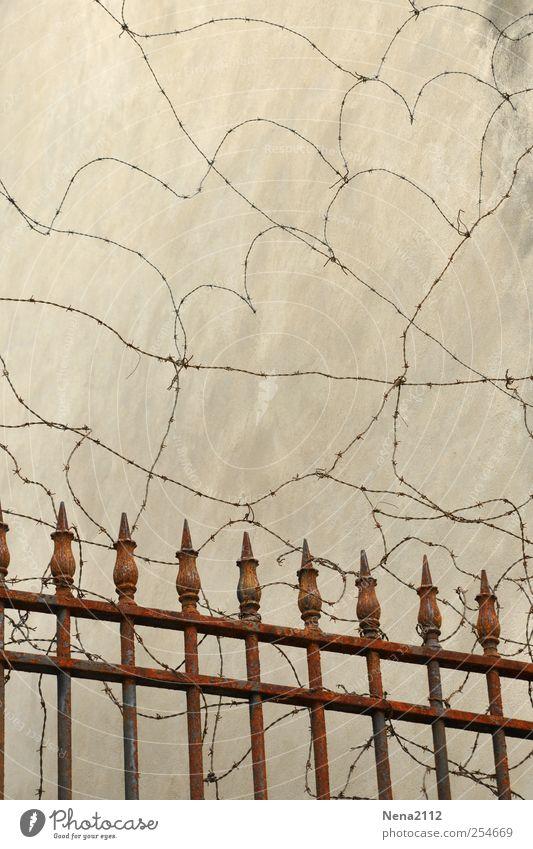 Stachelkurven... Metall braun Herz Sicherheit Schutz Zaun Stahl Rost Kurve Barriere Knoten schließen stachelig blockieren Stacheldraht Stacheldrahtzaun