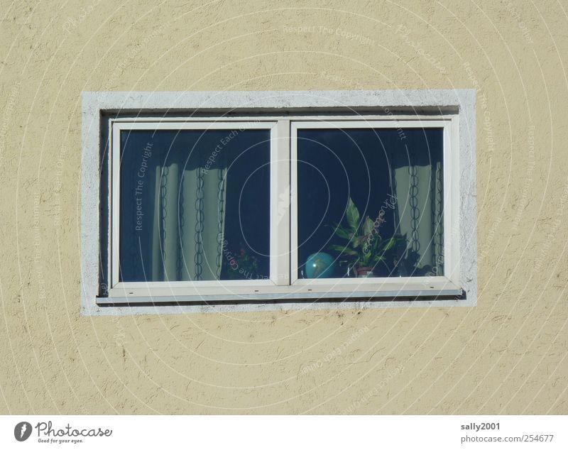 große weite Welt zu Hause... Ferien & Urlaub & Reisen Einsamkeit Ferne Fenster Freiheit träumen Erde Wohnung Fassade trist Häusliches Leben