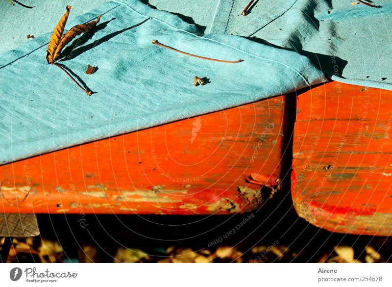 Das Sommerfest ist aus [CHAMANSÜLZ 2011] Natur blau grün rot Blatt Herbst Holz Garten Traurigkeit Feste & Feiern Ende Warmherzigkeit fallen Schönes Wetter