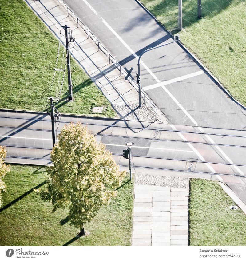 B@DD 11 | Dr. Külz grün Baum Straße Wiese Wege & Pfade Verkehr Gleise Fußweg Verkehrswege Ampel komplex Straßenkreuzung Wegkreuzung Verkehrsschild Oberleitung