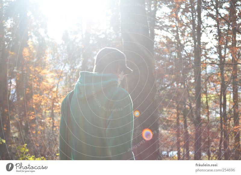 durch den Wald maskulin Rücken Natur Herbst Mütze laufen Farbfoto Außenaufnahme Sonnenlicht Sonnenstrahlen